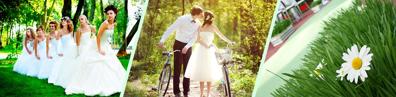 Отзывы о компании Свадебный День